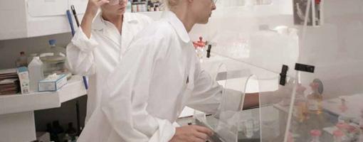 settore chimico cosmetico farmaceutico